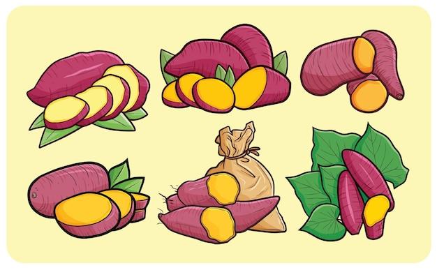 Kolekcja świeżych słodkich ziemniaków w stylu kreskówki