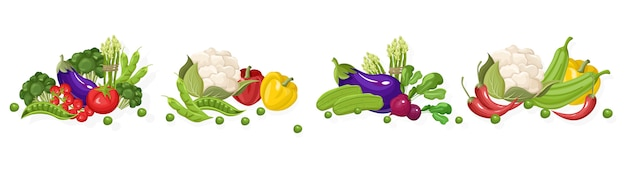Kolekcja świeżych warzyw na farmie