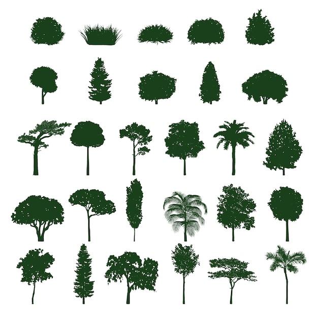 Kolekcja sylwetka drzewa