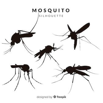 Kolekcja sylwetka komara