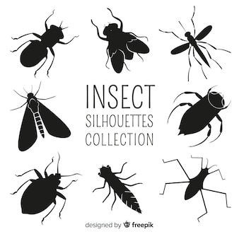 Kolekcja sylwetki owadów