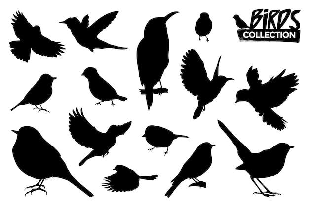 Kolekcja sylwetki ptaków na białym tle. zasoby graficzne.