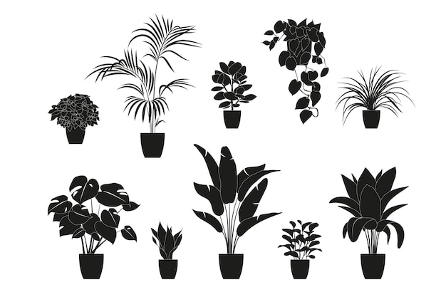 Kolekcja sylwetki roślin doniczkowych w kolorze czarnym. rośliny doniczkowe na białym tle. zestaw zielonych roślin tropikalnych. modny wystrój domu z roślinami domowymi, donicami, tropikalnymi liśćmi.