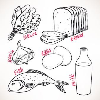 Kolekcja szkicu produktów spożywczych