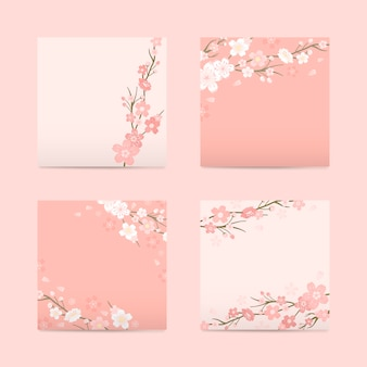 Kolekcja tło kwiat wiśni
