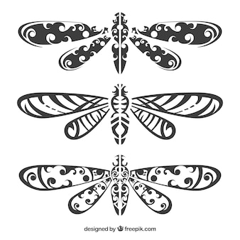 Kolekcja tatuaż dragonfly