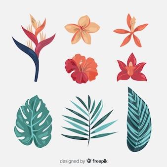 Kolekcja tropikalnych kwiatów i liści