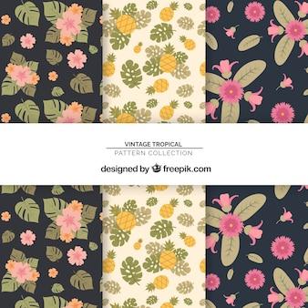 Kolekcja tropikalnych wzorów z kwiatami