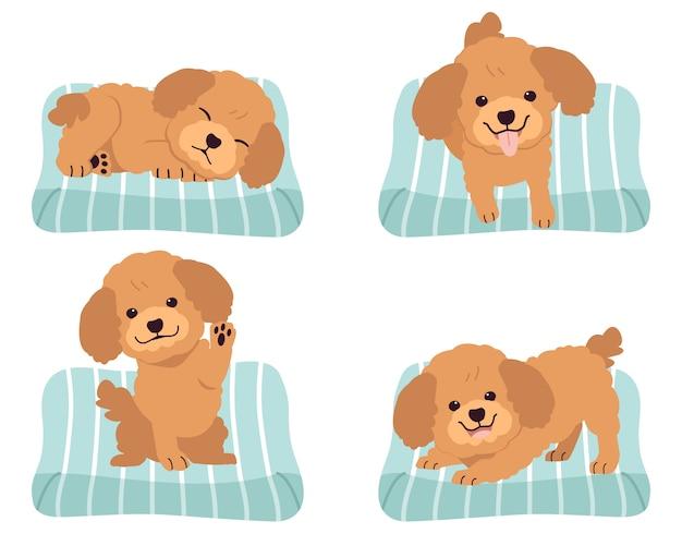 Kolekcja uroczego pudla na materacu lub łóżku psa w płaskiej stylistyce.