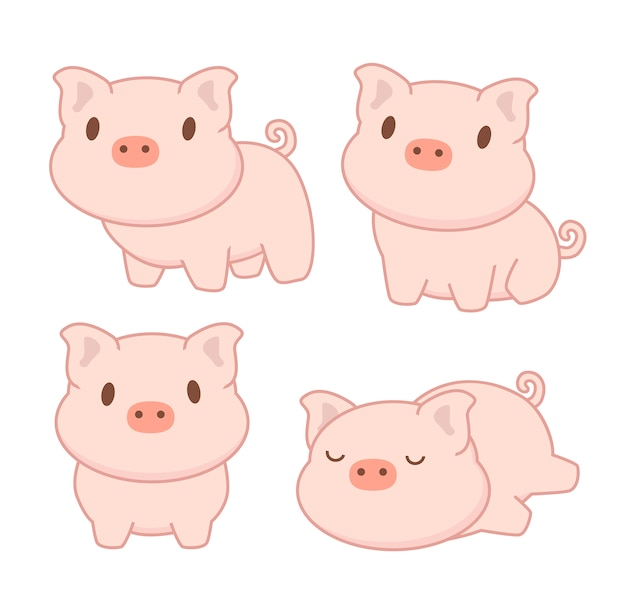 Kolekcja uroczej świni