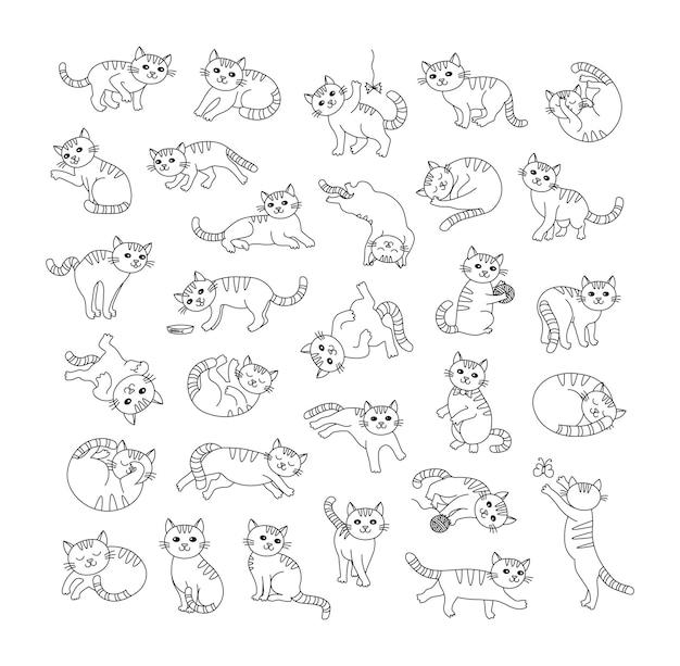 Kolekcja uroczych kotów w różnych pozach