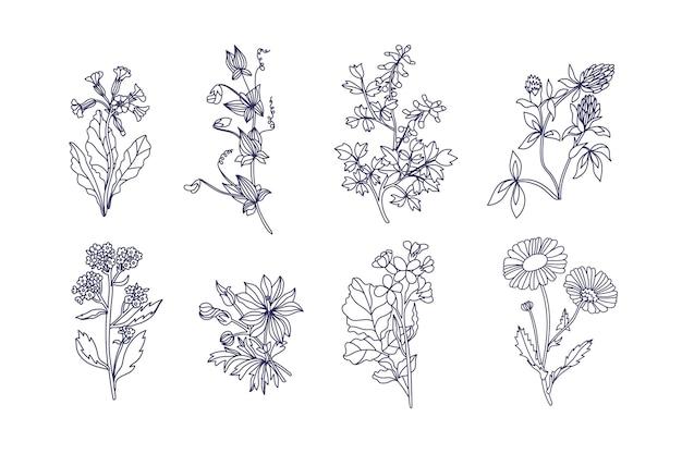 Kolekcja vintage kwiaty