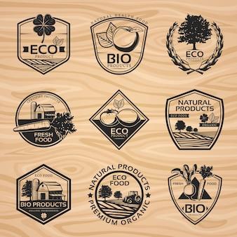 Kolekcja vintage naturalne etykiety