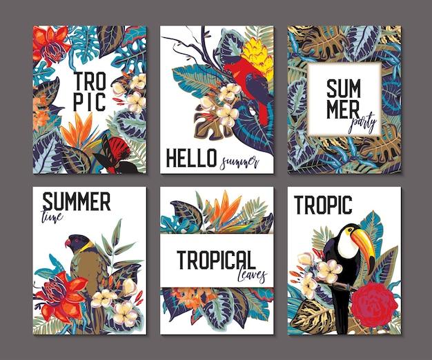 Kolekcja wektorów z sześcioma kartami i banerami z egzotycznymi kwiatami i liśćmi tukanów