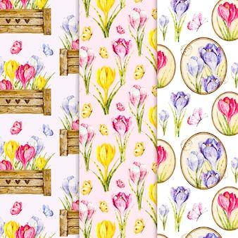 Kolekcja wiosna akwarela wzór
