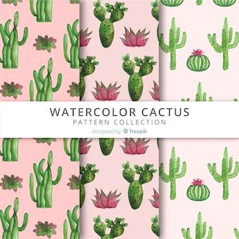 Kolekcja wzorów cactus