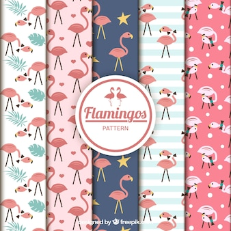 Kolekcja wzory flamingi w stylu płaski