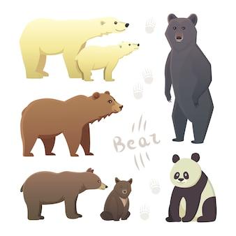Kolekcja z różnych niedźwiedzi kreskówka na białym tle. wektor broun i czarny niedźwiedź amerykański. ustaw grizzly wildlife lub zoo. panda.