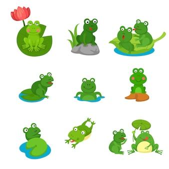 Kolekcja żaba kreskówka na białym tle