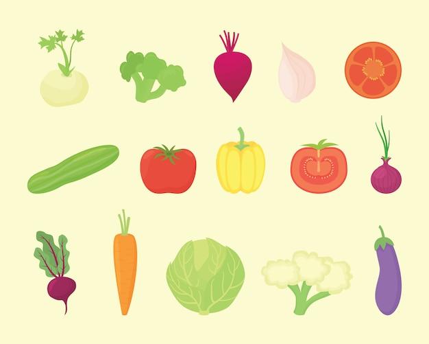 Kolekcja zestawów warzywnych o różnych rodzajach i różnych kolorach z nowoczesnym stylem mieszkania