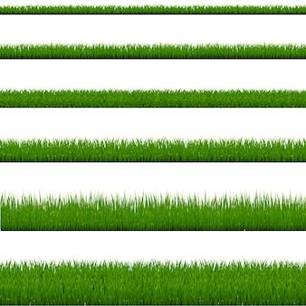 Kolekcja zielona trawa na białym tle