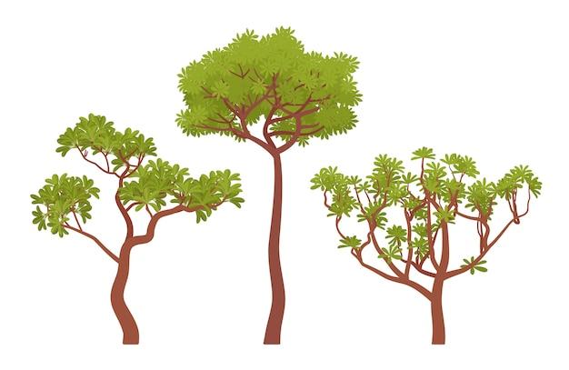 Kolekcja zielonych drzew