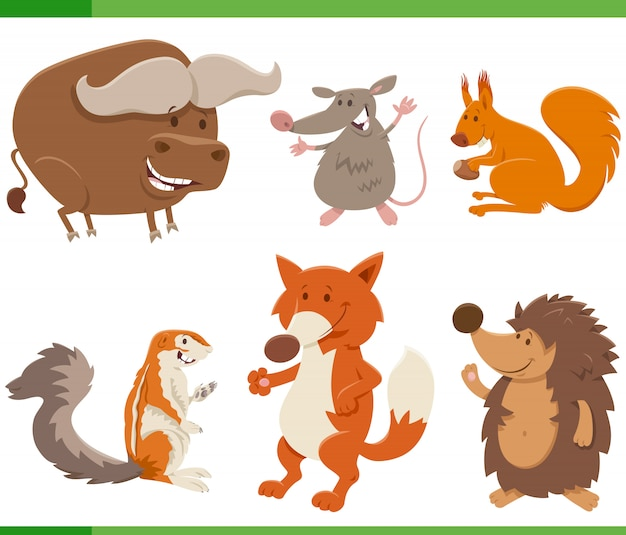 Kolekcja znaków dzikich zwierząt śmieszne kreskówki