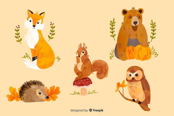 Kolekcja zwierząt akwarela jesień