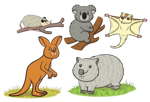 Kolekcja zwierząt australijskich