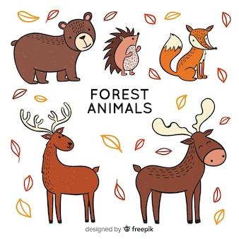 Kolekcja zwierząt jesień las
