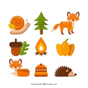 Kolekcja zwierząt jesienią