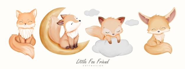 Kolekcja zwierząt little fox friend