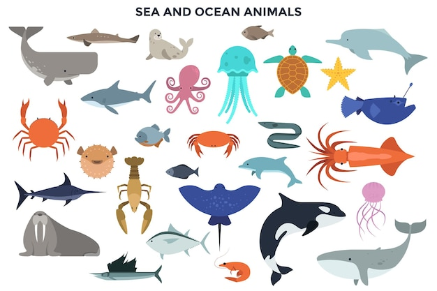 Kolekcja zwierząt morskich i oceanicznych - ssaków morskich, gadów, ryb, mięczaków, skorupiaków. zestaw znaków kreskówka na białym tle. ilustracja wektorowa kolorowy w stylu płaski.