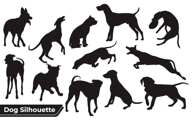 Kolekcja Zwierząt Pies W Różnych Pozycjach Premium Wektorów