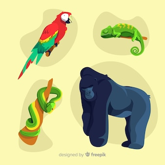 Kolekcja zwierząt tropikalnych płaska konstrukcja