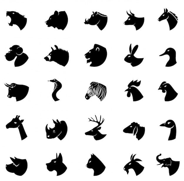 Kolekcja zwierząt