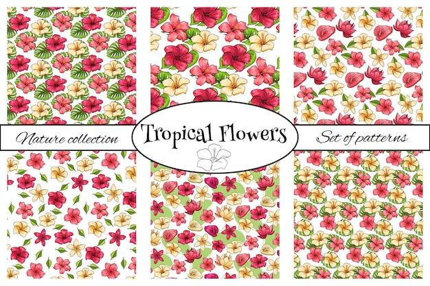 Kolekcje tropikalnych wzorów z egzotycznymi kwiatami w stylu cartoon. jasny letni nadruk do projektowania i tła.