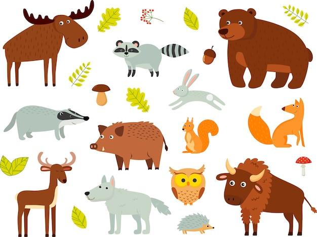 Kolor wektor zestaw zwierząt leśnych na białym tle. mech, niedźwiedź, jeleń, żubr, borsuk, lis, jeż, sowa, królik, szop pracz, wilk.