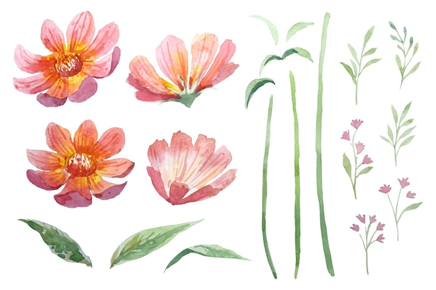 Kolor wody czerwony kwiat cynia z gałęzi
