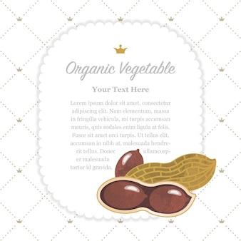 Kolorowa akwarela tekstura natura organiczne warzywo notatka ramka orzeszek ziemny