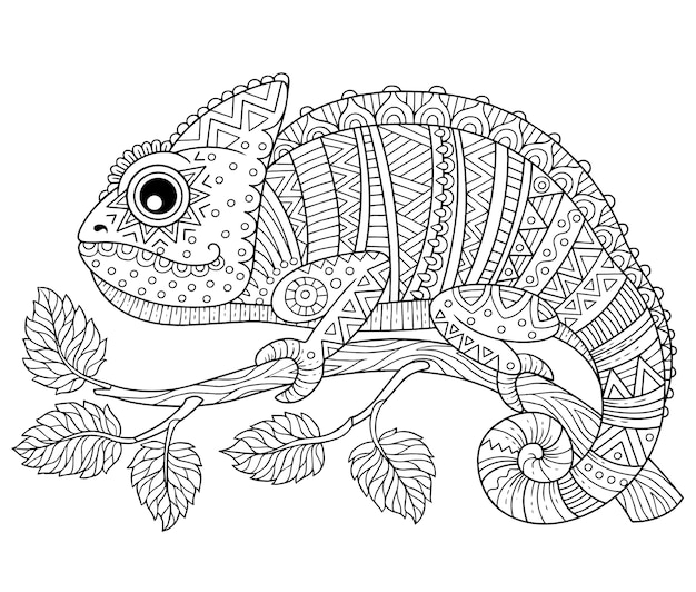 Kolorowanka dla dorosłych, kameleon kontur na gałęzi na białym tle. wzory i drobne szczegóły do kolorowania