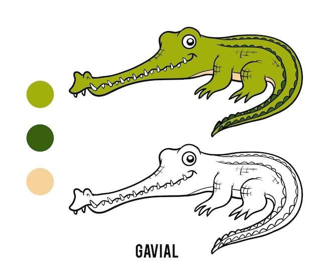 Kolorowanka dla dzieci, krokodyl gawial