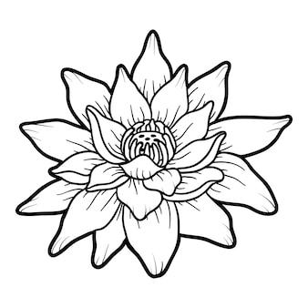 Kolorowanka dla dzieci, kwiat lotosu