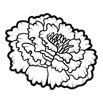 Kolorowanka dla dzieci, kwiat nagietka