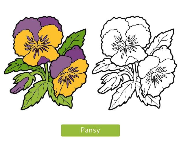 Kolorowanka dla dzieci, kwiat pansy