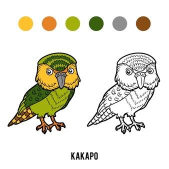 Kolorowanka dla dzieci, papuga kakapo