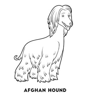Kolorowanka dla dzieci rasy psów chart afgański
