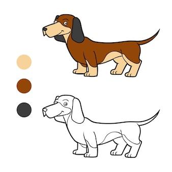 Kolorowanka dla dzieci rasy psów jamnik