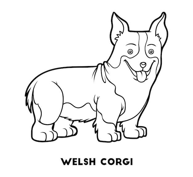 Kolorowanka dla dzieci rasy psów welsh corgi