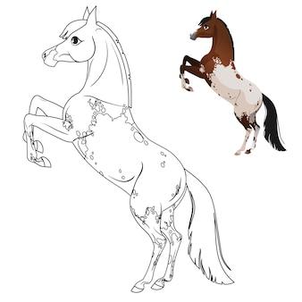 Kolorowanka dla dzieci z koniem. z podpowiedzią